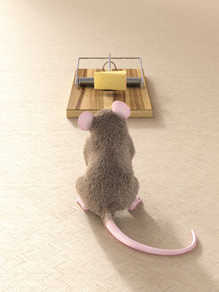 Mouse looking at piece of cheese in mouse trap - AHUF000061