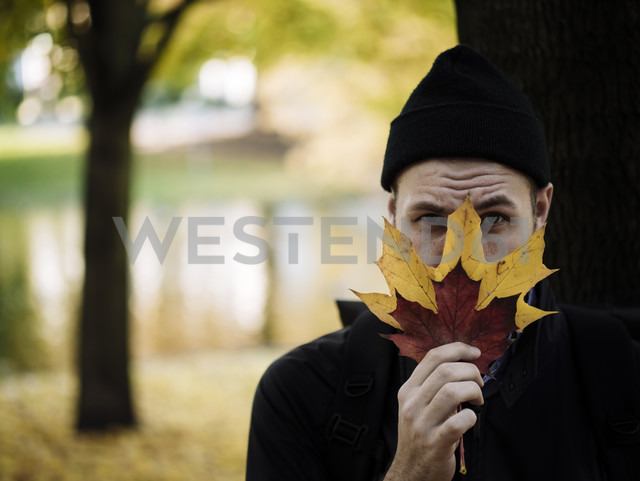 Portrait of man wearing woolly hat hiding behind autumn leaves - DASF000022 - David Stoll/Westend61