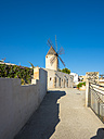 Spain, Majorca, Palma, historic windmill Es Jonquet in Santa Catalina quarter - AMF004404