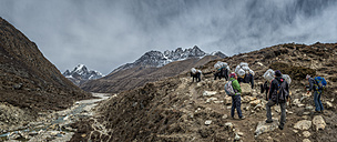 Nepal, Himalaya, Khumbu, Pheriche, trekkers and pack animals on hiking trail - ALR000134