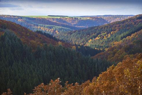 Germany, Rhineland-Palatinate, Hunsrueck, Saar-Hunsrueck-Steig, Geierlay - BSCF000504
