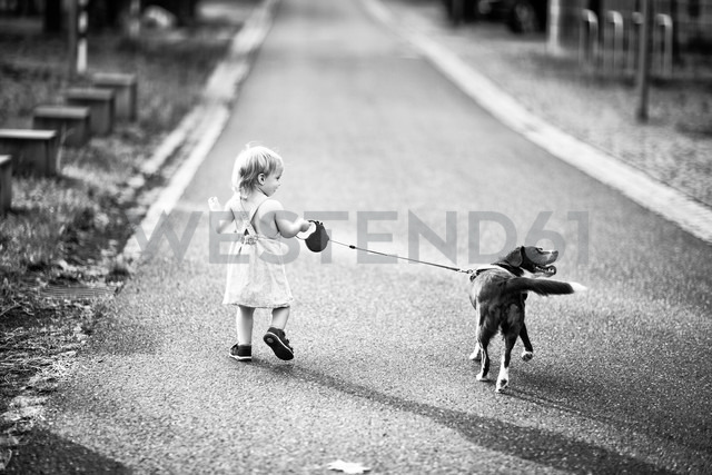 Back view of little girl walking along the street with her dog - NIF000067 - Nailia Schwarz/Westend61