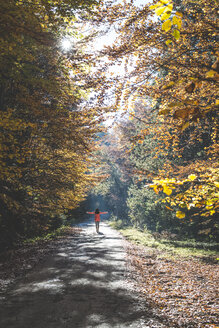 Back view of woman enjoying sunlight in autumnal forest - DEGF000585
