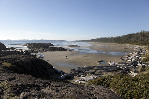 Canada, Vancouver Island, Longbeach, Driftwood on the beach - TMF000065
