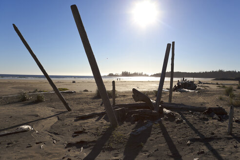 Canada, Vancouver Island, Longbeach, Driftwood on the beach - TMF000071