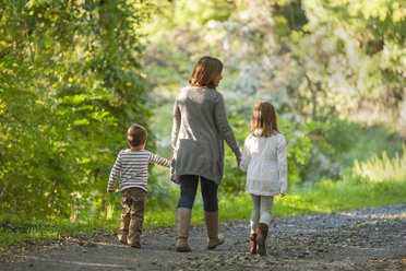 Back view of mother walking with her children on forest track - PAF001475