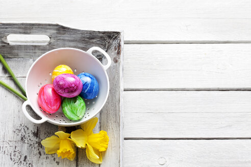 Colander of Easter eggs and daffodils on wooden tray - CSF026790