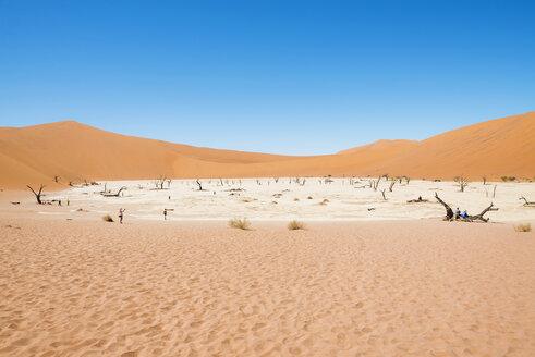 Namibia, Namib Desert, dead trees in Deadvlei - GEMF000525