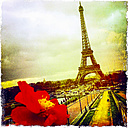 France, Paris, Eiffel Tower - JUNF000476