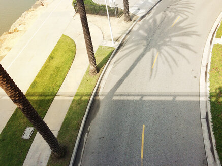 top shot of street with shadow of palm trees and bridge, USA, California, Los Angeles - BMA000074