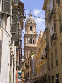Spain, Malaga, cathedral de la Encarnacion - AM004518