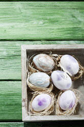 Wooden box of pastel coloured Easter eggs on green wood - CSF026920