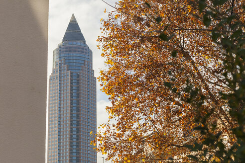 Germany, Frankfurt, view to exhibition tower and tree with autumn leaves - ZMF000442