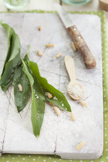 Ingredients for ramson pesto - SBDF002529