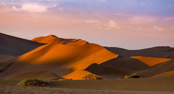 Namibia, Naukluft National Park, Namib Desert, Sossusvlei, Sand dunes at Dead Vlei in the evening - AMF004551