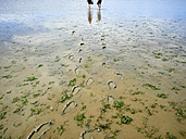 Canada, Iona Beach Regional Park, two women walking on beach at low tide - DIS002277