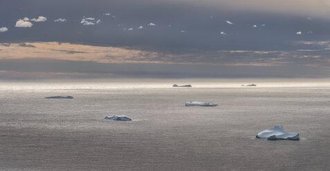 Greenland, Schweizerland, Kulusuk, floes - ALRF000229