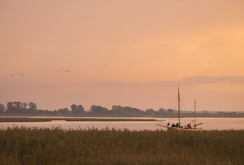 Germany, Zingst, Barther Bodden at evening twilight - SIEF006896
