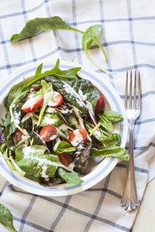 Mixed green salad with yoghurt sauce - SBDF002589