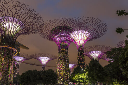 Singapore, Gardens by the Bay, Supertree Grove, Supertrees, illuminated at night - PC000215