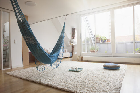 Home interior with hammock and carpet - RBF003673