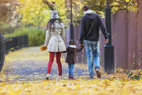 Family walking hand in hand in autumnal park - HAPF000087