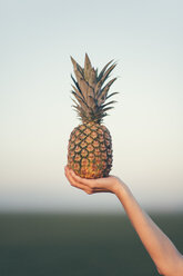 Woman holding a pineapple - JPF000088