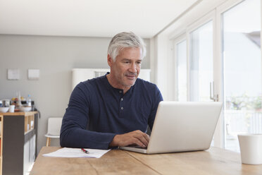 Portrait of mature man using laptop at home - RBF003826