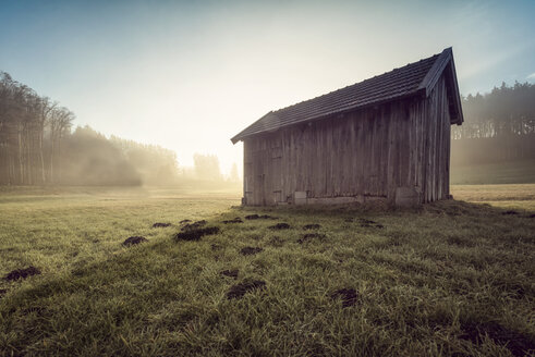 Austria, Ibm, wooden hut on meadow at sunrise - OPF000098
