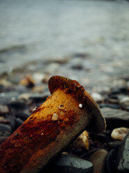 Rusty pipe and pebbles at riverside - DASF000040