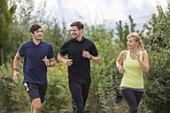 Two smiling men and woman jogging - SHKF000429
