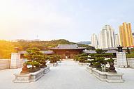 China, Hong Kong, Chi Lin Nunnery - HSIF000389