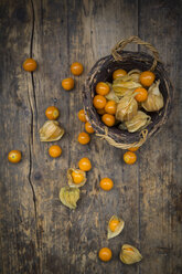 Physalis in basket and on wood - LVF004387