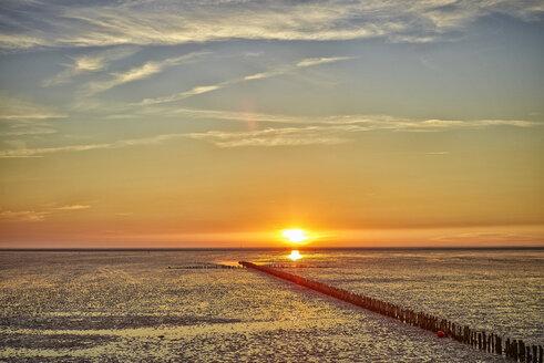 Germany, Dithmarschen, Friedrichskoog-Spitze, Sunset at the North Sea tidelands - DIKF000174
