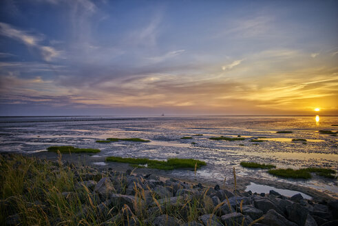 Germany, Dithmarschen, Friedrichskoog-Spitze, Sunset at the North Sea tidelands - DIKF000177