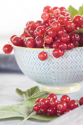 Bowl of red currants with leaves, close-up - SBDF002629