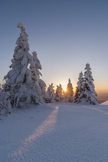 Germany, Saxony-Anhalt, Harz National Park, Landscape in winter in the evening - PVCF000745