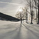 Germany, Gmund, winter landscape at backlight - KAF000127