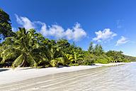 Seychelles, Praslin, Anse Volbert, beach - FOF008398