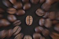 Coffee bean - JTF000727