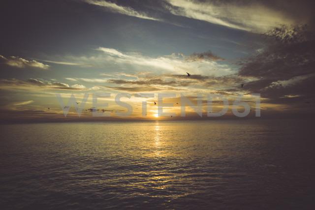 USA, Florida, Naples, sunset over sea - CHPF000195