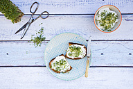 Slice of toasted  bread with organic curd and cress - LVF004442