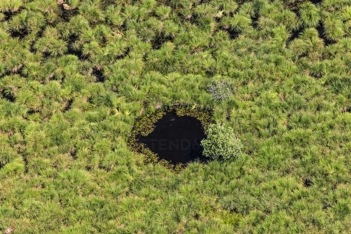 Egelsee lake, Marshy landscape, aerial view - KLEF000025 - Klaus Leidorf/Westend61