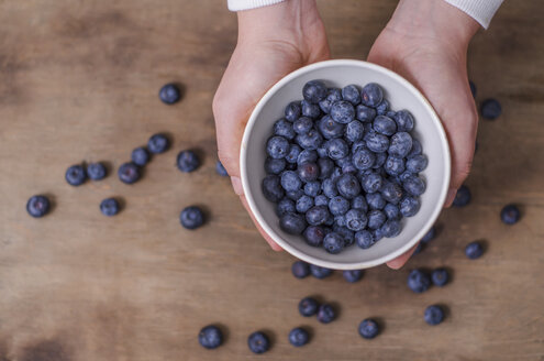 Woman's hands holding bowl of blueberries - ODF001366