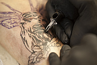 Tattooist at work, close-up - MFRF000494