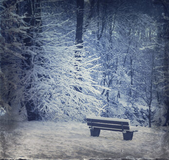 Germany, Empty bench in winter forest - DWIF000670