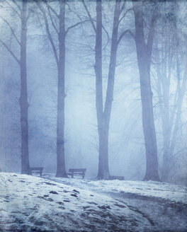 Germany, Empty bench in winter forest - DWIF000673