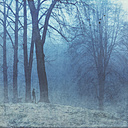 Germany, Man walking in winter forest - DWI000676