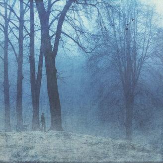 Germany, Man walking in winter forest - DWI000676