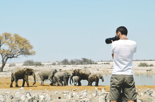 Namibia, Etosha National Park, photographer taking pictures of elephants near a waterhole - GEMF000660